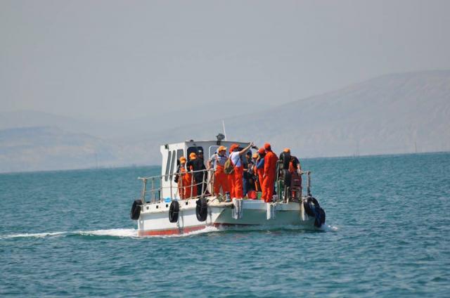 Были проведены научные исследования в острове Хара Зира Каспийского моря